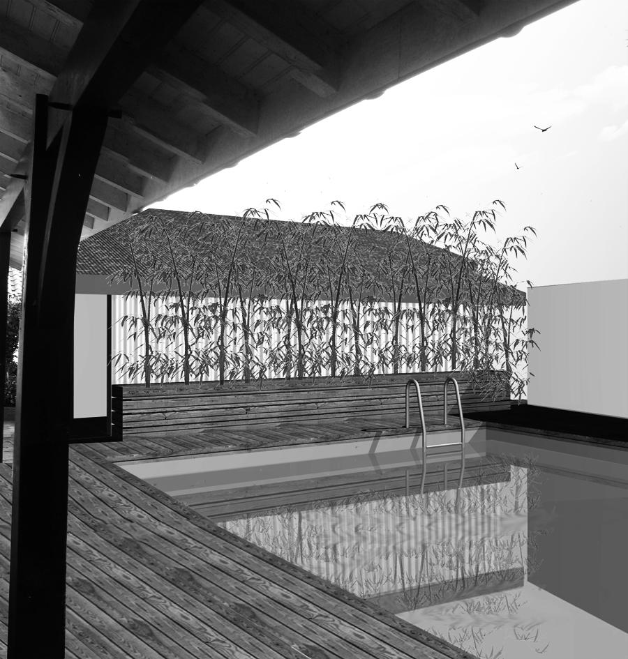 conception d 39 une piscine pour une maison individuelle charlotte staffe dessin d 39 architecture. Black Bedroom Furniture Sets. Home Design Ideas